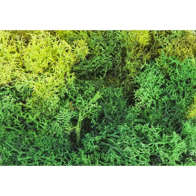 Лишайник зеленый Faller 170729