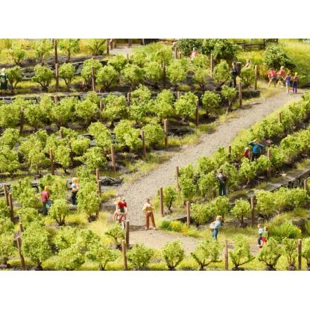 Кусты винограда Noch 21540