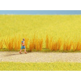 Поля, луга и трава