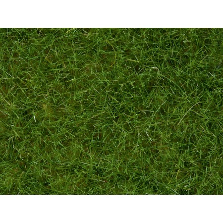 Дикая трава Noch 07102