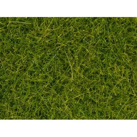 Дикая трава Луг Noch XL 07112